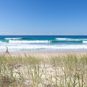 Beach with tall grass | Saltwater Beach House