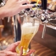 Image of bartender pouring beer into a schooner glass | Featured image for Sunshine Coast craft beer tours you can't miss | Blog